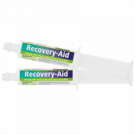 Ranvet Recover Aid-Paste 80ml